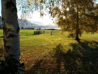 Autumn view from Blue Cottage