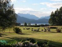 View towards Lake & Mountains