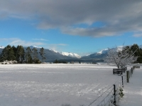 Winter View from Blue Cottage