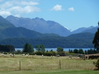 View to the Fiordland Mountains